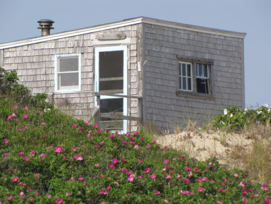 Provincetown Cape Cod dune shack