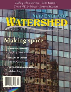 New England Watershed Vol 1, No 5