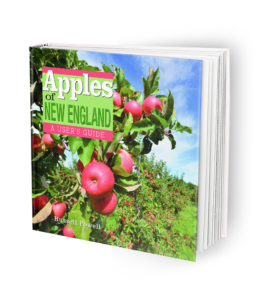 Apples of New England