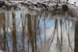 Mill River, Hatfield, Massachusetts, January. (Jonathan A. Wright photo)