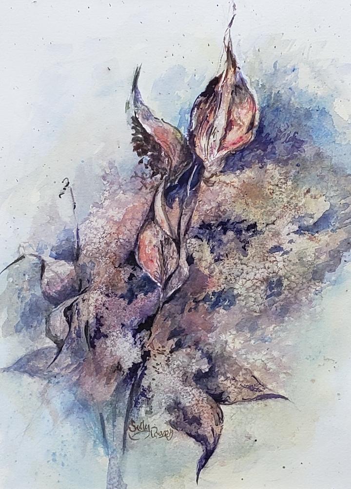 Milkweed Pods, Sally Boyce Powell watercolor on paper, 15x11